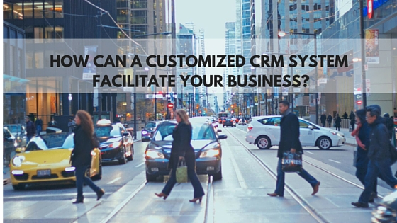 customized crm system